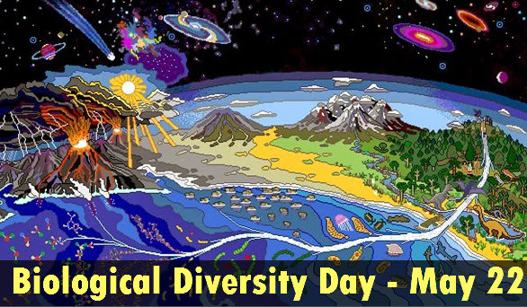 biodiversity day - 22 may
