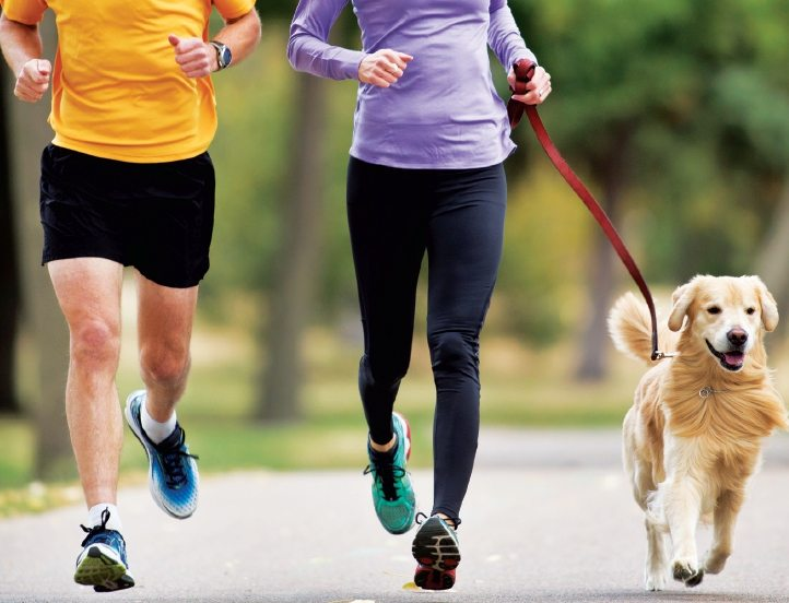 6 Reasons to Recruit Your Dog As Your Fitness Buddy
